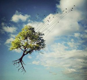 artistic-surreal-photomanipulation-by-sarolta-ban-17