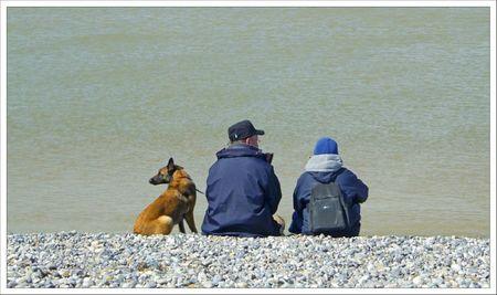 plage couple chien regard