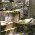 Père Lachaise : Chaos et Abandon ...