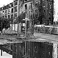 Distillerie Pontoise (reflet)_9528