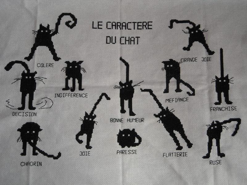 Le caractère du chat