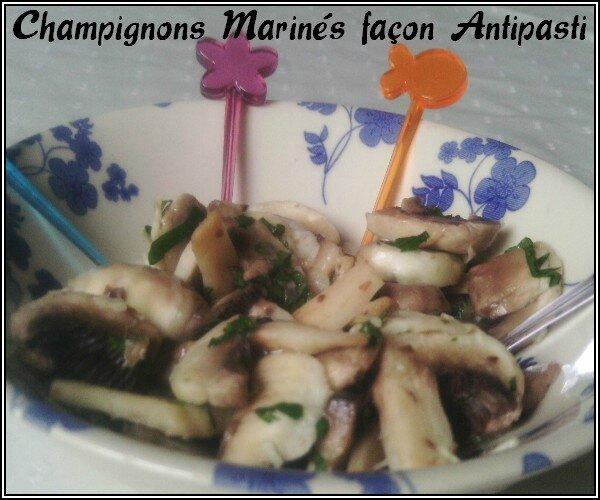 champignons-marine-1