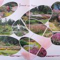 Les jardins de Callunes 6