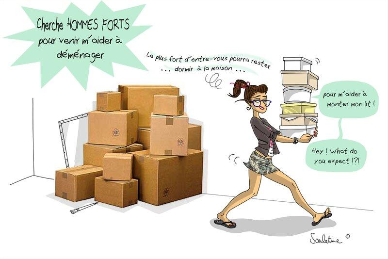 scarlatine déménagement