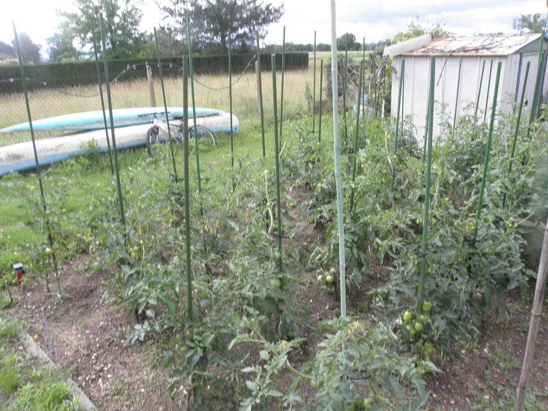 le jardin 005