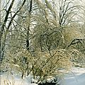 L'hiver - winter - el invierno