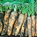semaine du goût à la SIPEMA LUNDI 15 OCT 2012 (27)