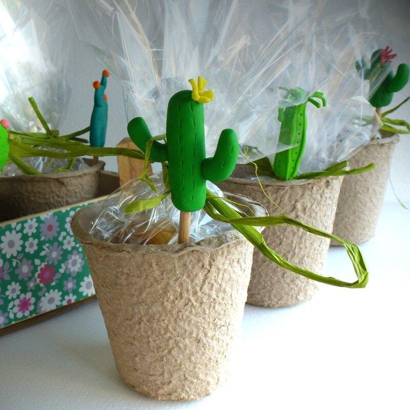 pot cactus 2