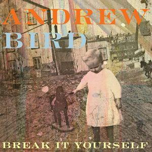 Andrew-Bird_BreakitYourself