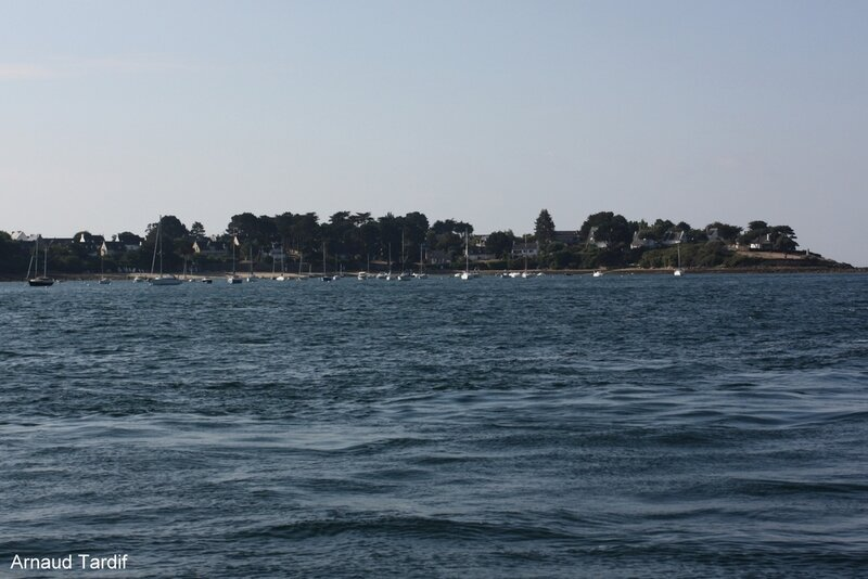 001131 Larmor-Baden - La Croisière du Golfe du Morbihan - Port-Navalo