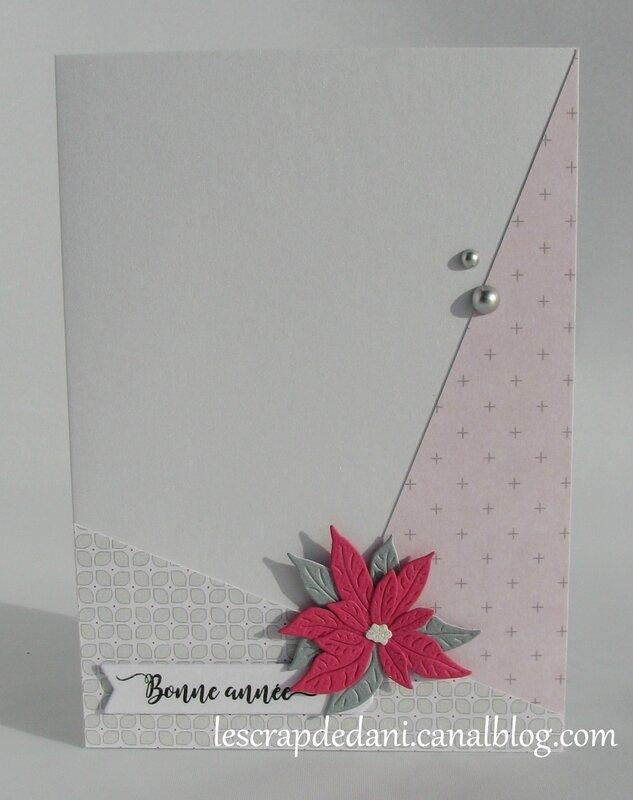 dani carte combo rose f-gris-blanc8