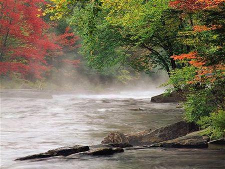 matin_riviere