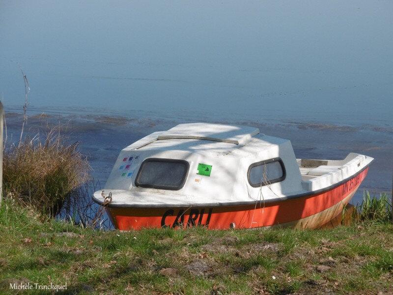 1-Lac de Mimizan 270219