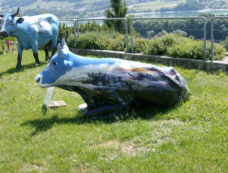 Vache peinte faisant partie d'un concours