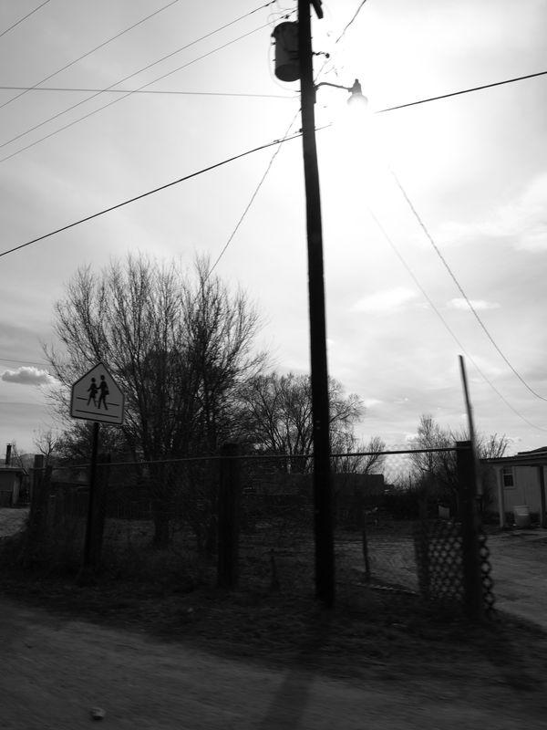road_trip_343