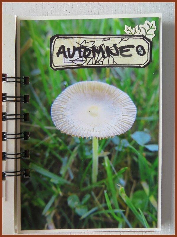 Album Hello Automne (18)