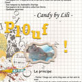 Blog candy by lili