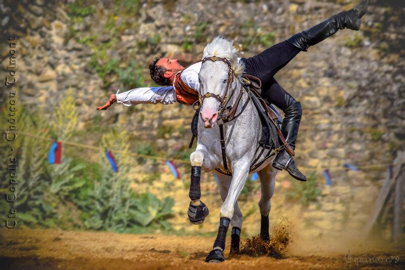 L'engouement des fêtes médiévales dans les Pays de La Loire et en France (2)