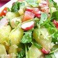 Une bonne petite salade