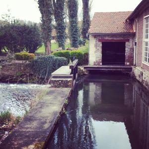 Cottage__St