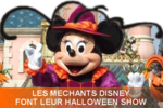 DLP_LES_MECHANTS_DISNEY_FONT_LEUR_HALLOWEEN_SHOW_2008