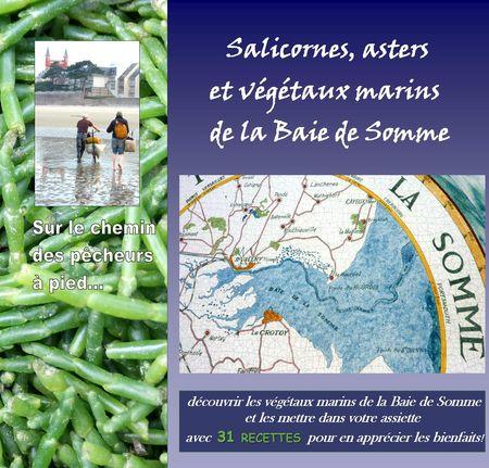 couverture_salicornes
