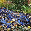 Grande robe bleue constituée de feuilles d'érable bleues