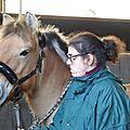 Elise & kalina au top cet après-midi au centre équestre municipal de neuilly-sur-marne