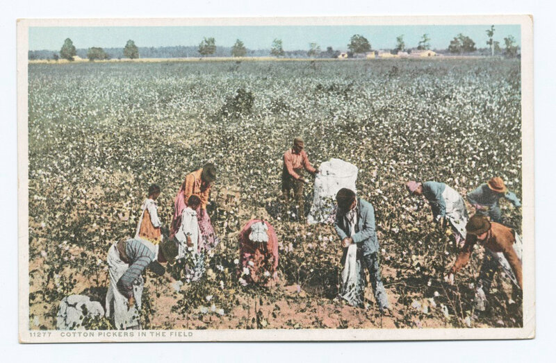 Cotton_Pickers_in_the_Field_(NYPL_b12647398-69474)