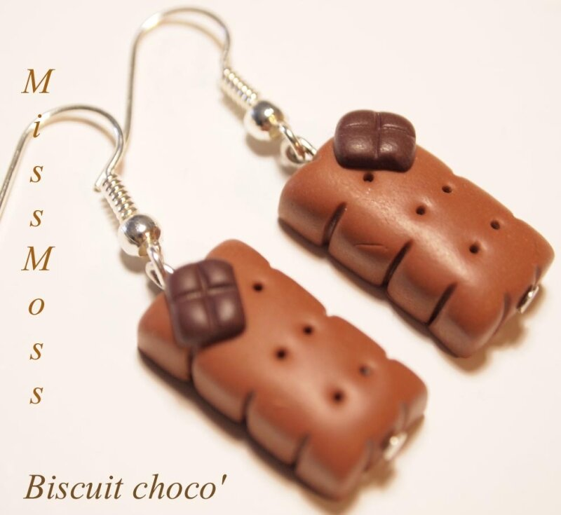 Biscuit choco bo