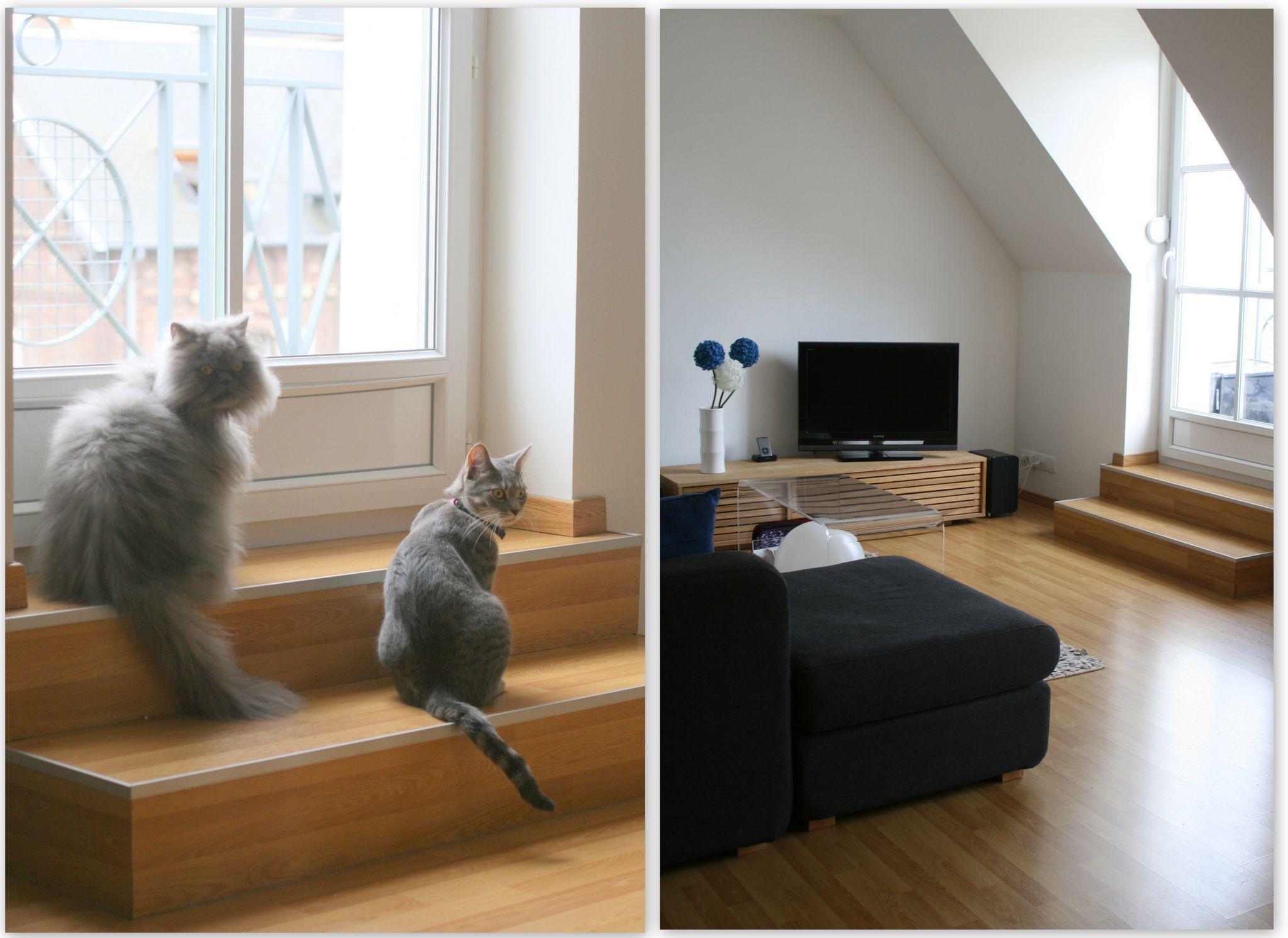 un appartement mansardé. - cats and polka dots