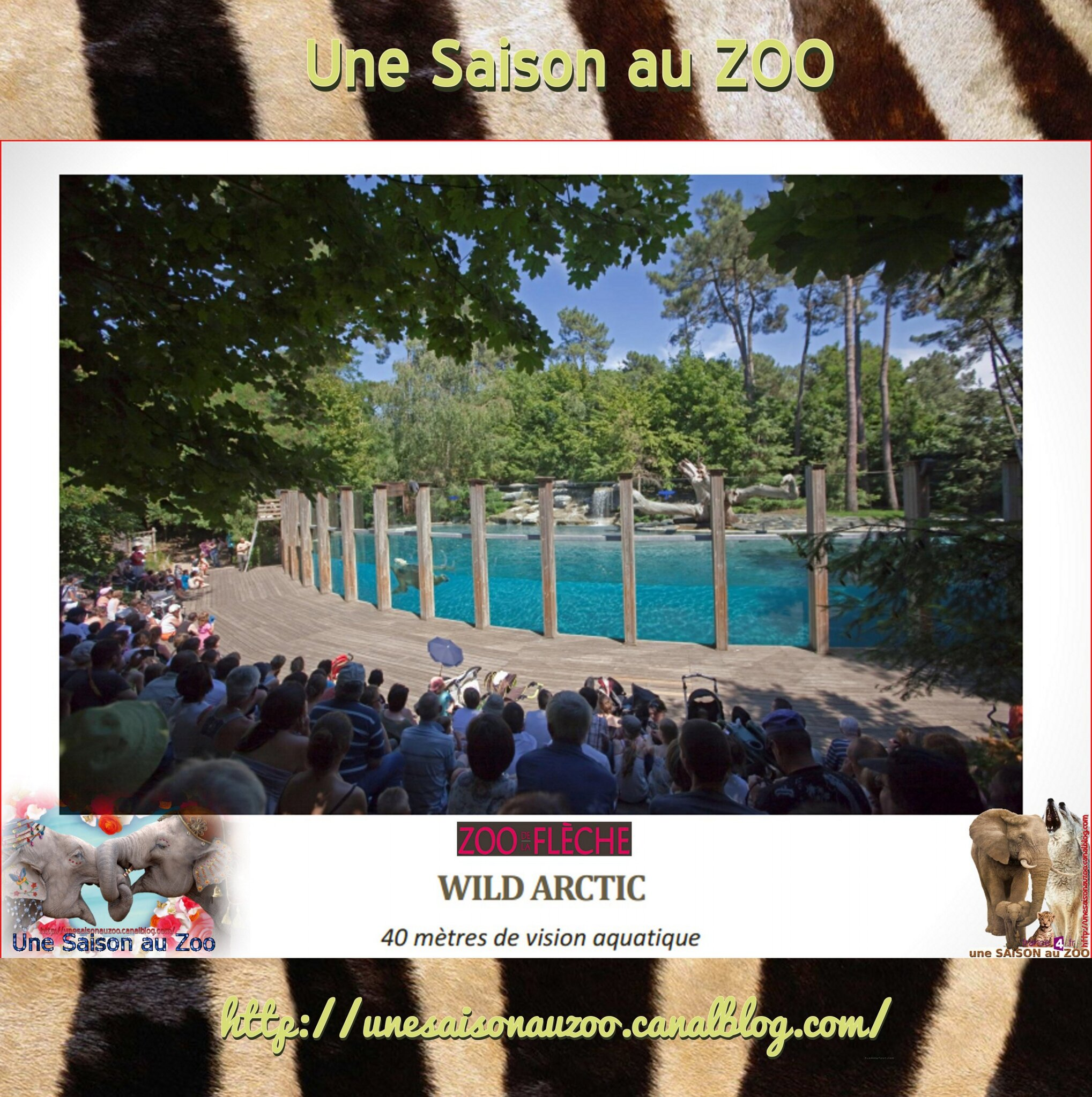 - LODGES SAiSON au ZOO