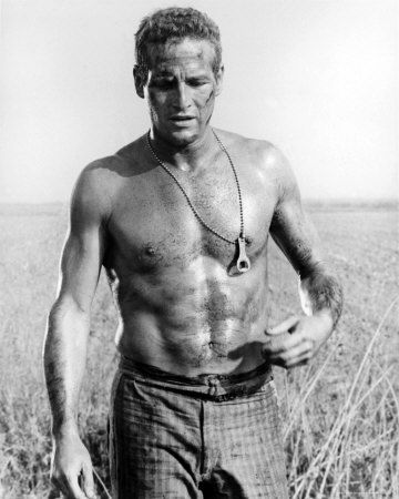 165239_Paul_Newman_Posters