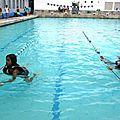 Les tests natation