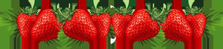barre fraises