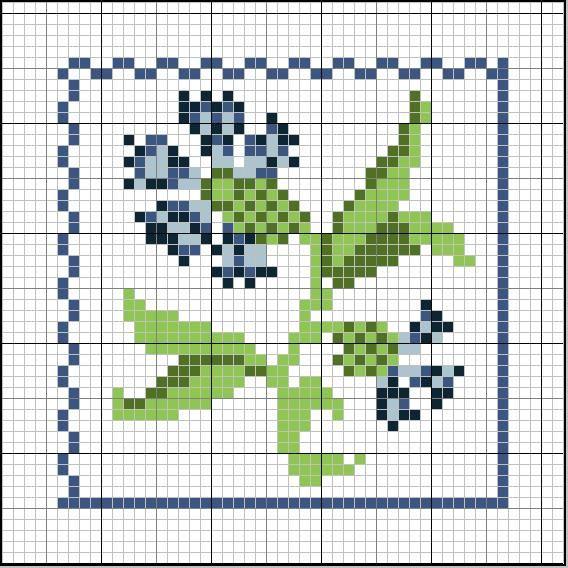 Flowers centaurée