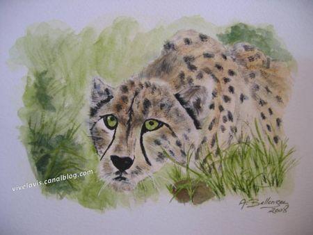 29___Leopard_Juillet_2008