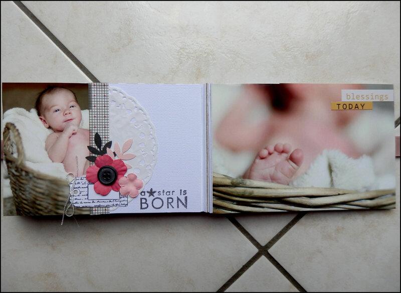 Mini Bienvenue bébé (10)